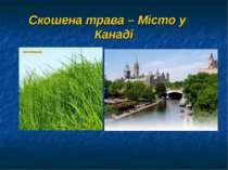 Скошена трава – Місто у Канаді