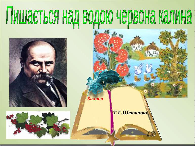 Калина Т.Г.Шевченко