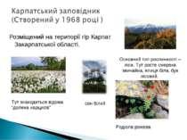 Розміщений на території гір Карпат Закарпатської області. Тут знаходиться від...