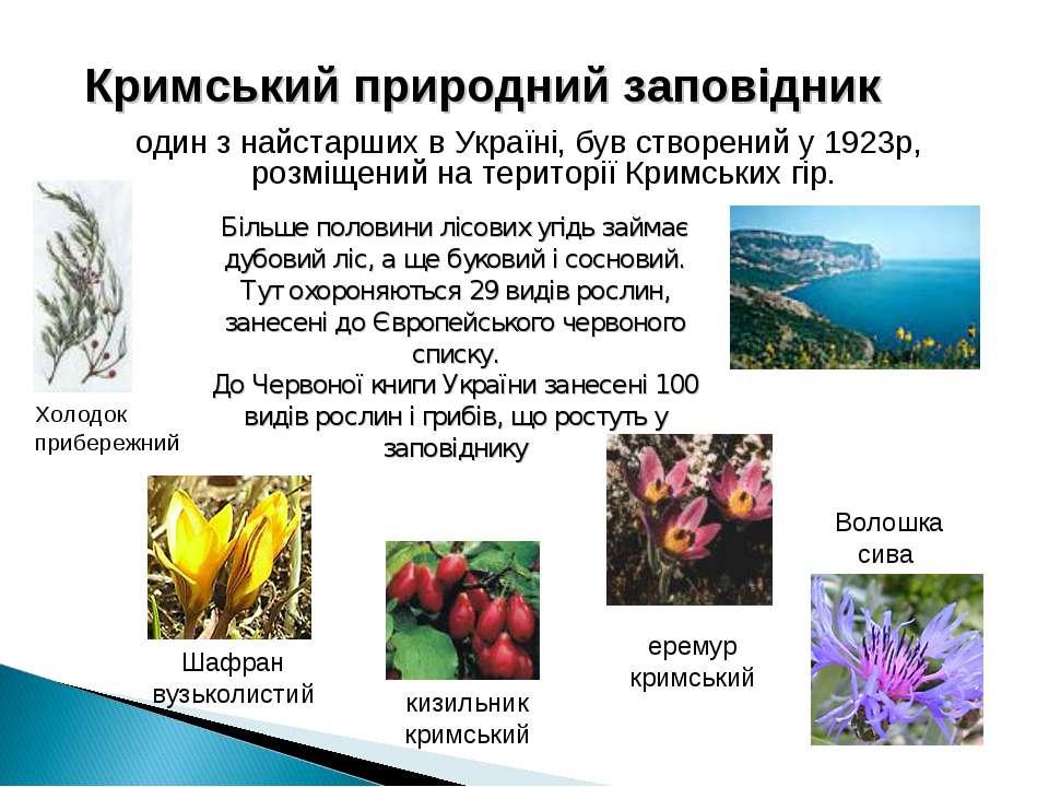 Кримський природний заповідник один з найстарших в Україні, був створений у 1...