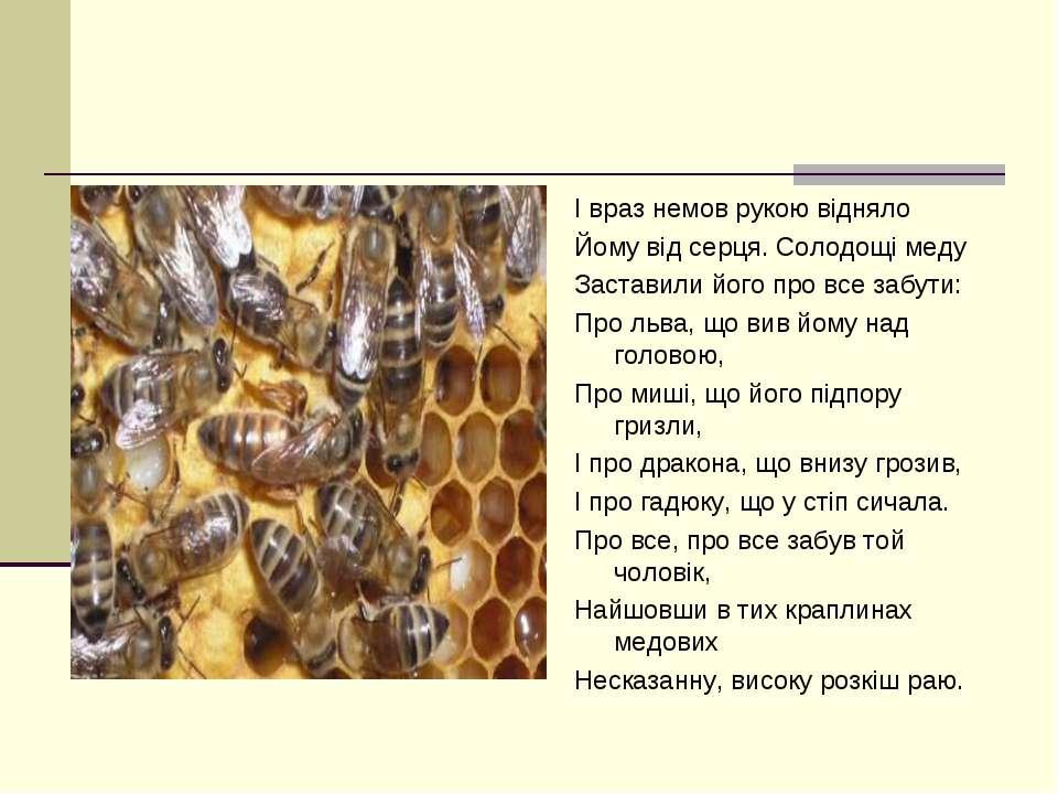 І враз немов рукою відняло Йому від серця. Солодощі меду Заставили його про в...