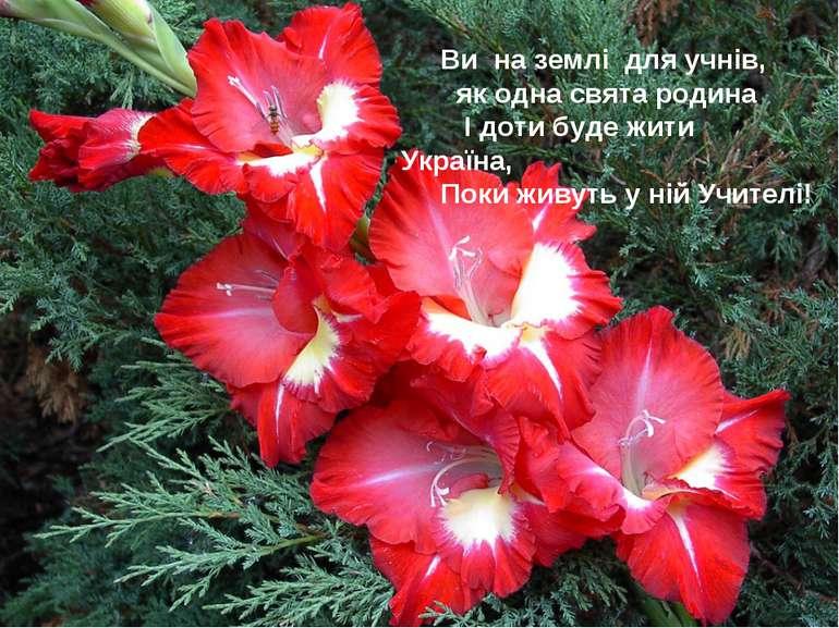 Ви на землі для учнів, як одна свята родина І доти буде жити Україна, Поки жи...