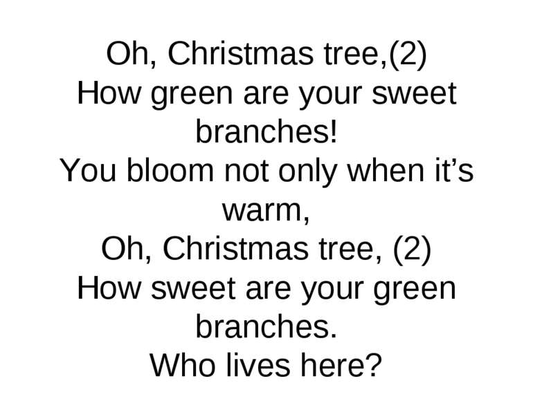 Oh, Christmas tree,(2) How green are your sweet branches! You bloom not only ...