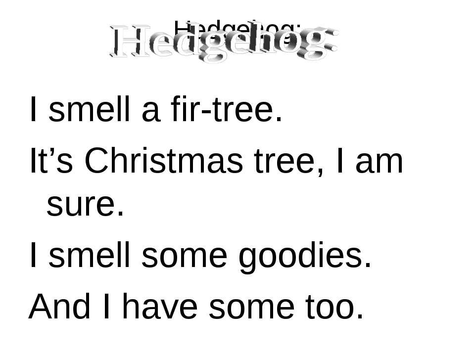 Hedgehog: I smell a fir-tree. It's Christmas tree, I am sure. I smell some go...