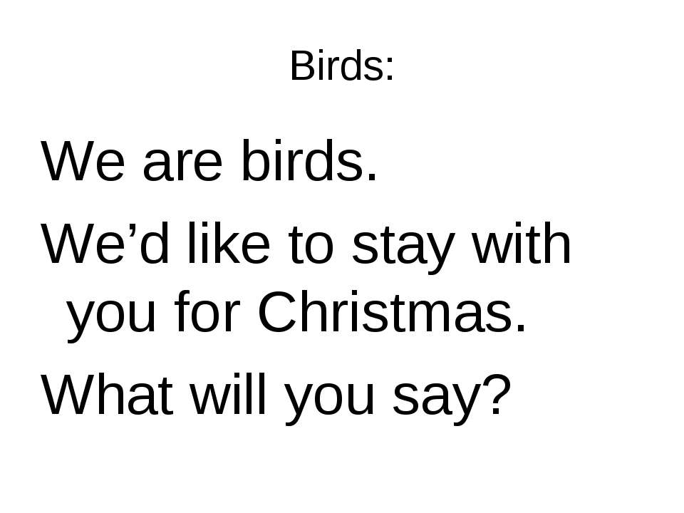 Birds: We are birds. We'd like to stay with you for Christmas. What will you ...