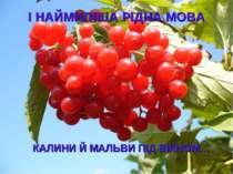 І НАЙМИЛІША РІДНА МОВА КАЛИНИ Й МАЛЬВИ ПІД ВІКНОМ…