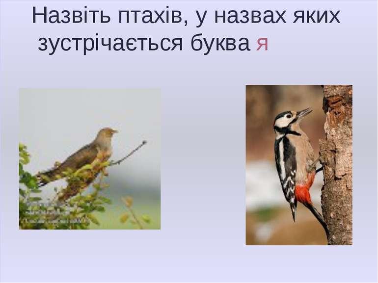 Назвіть птахів, у назвах яких зустрічається буква я