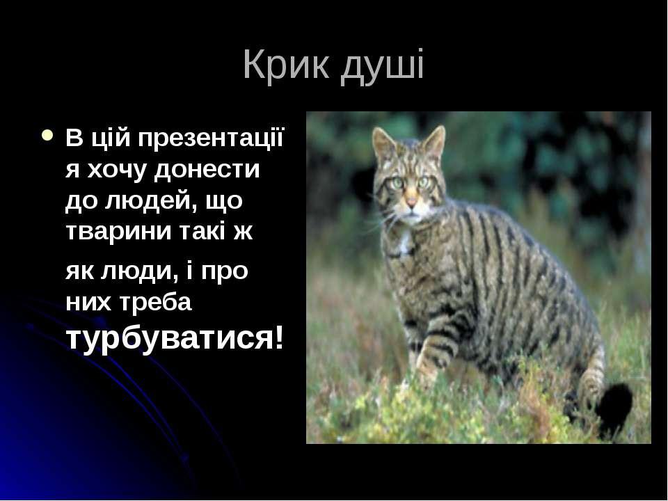 Крик душі В цій презентації я хочу донести до людей, що тварини такі ж як люд...