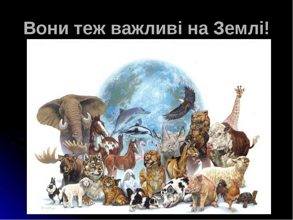 Вони теж важливі на Землі!