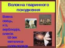 Волокна тваринного походження Вовна овець, кіз, верблюдів, оленів. Шовк метел...