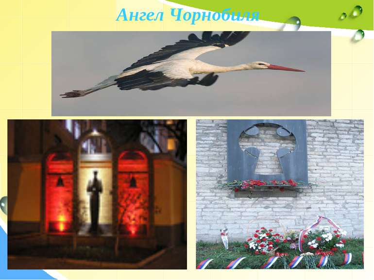 Ангел Чорнобиля