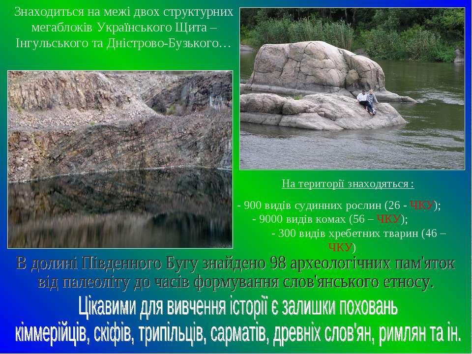 Знаходиться на межі двох структурних мегаблоків Українського Щита – Інгульськ...