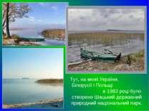 Тут, на межі України, Білорусії і Польщі в 1983 році було створено Шацький де...