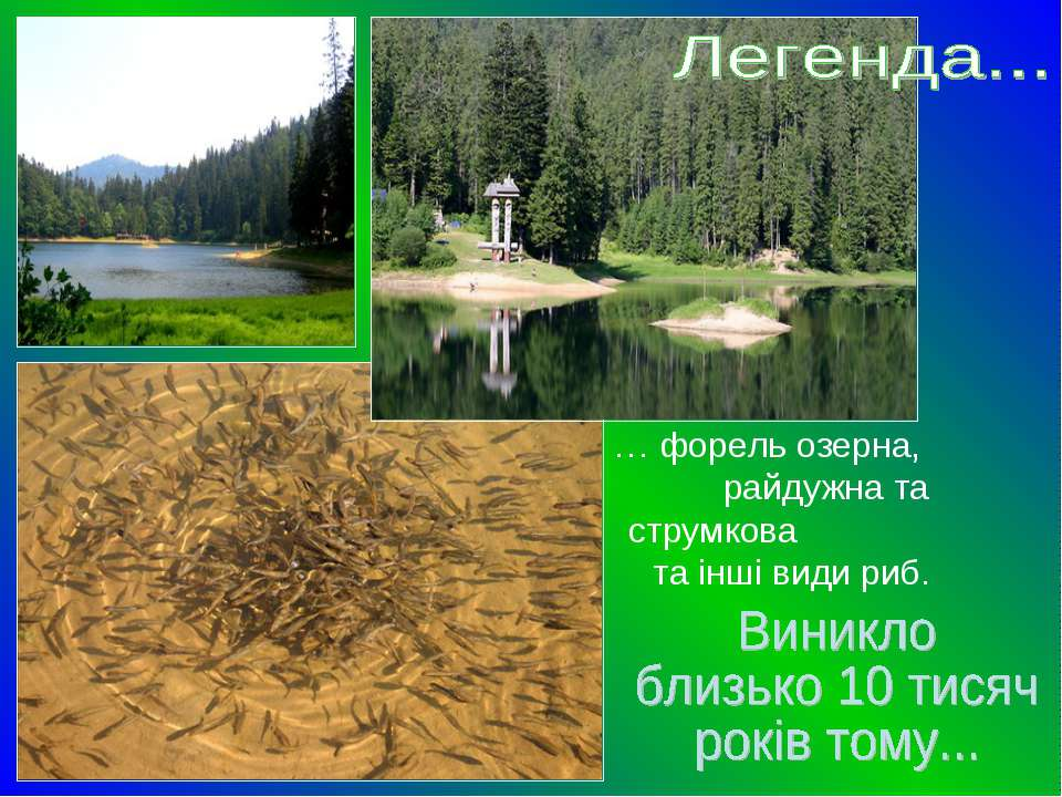 … форель озерна, райдужна та струмкова та інші види риб.