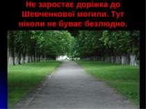 Не заростає доріжка до Шевченкової могили. Тут ніколи не буває безлюдно.