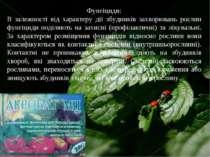 Фунгіциди: В залежності від характеру дії збудників захворювань рослин фунгіц...
