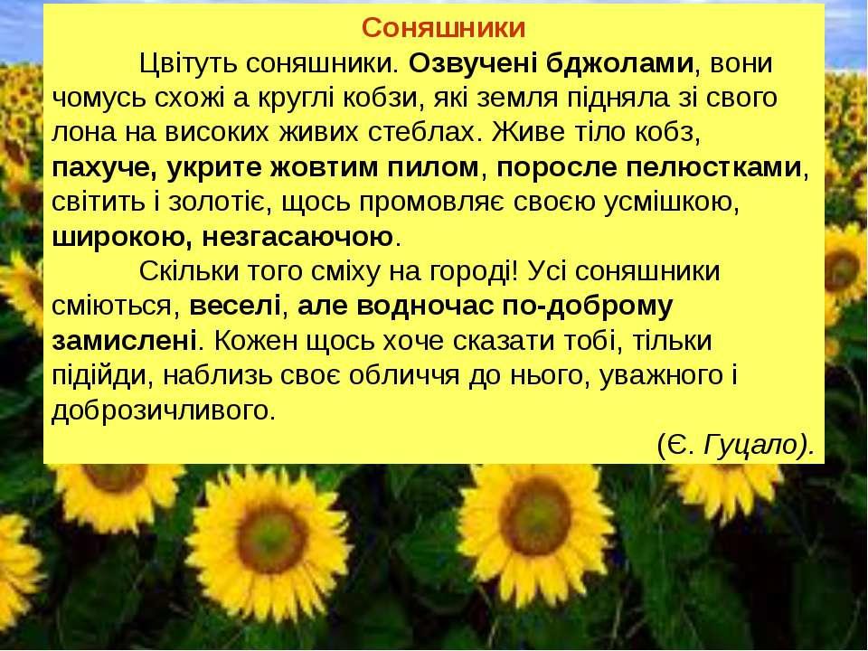 Соняшники Цвітуть соняшники. Озвучені бджолами, вони чомусь схожі а круглі ко...