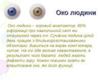 Око людини Око людини – зоровий аналізатор, 95% інформації про навколишній св...