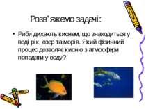 Розв'яжемо задачі: Риби дихають киснем, що знаходиться у воді рік, озер та мо...