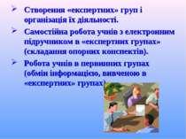 Створення «експертних» груп і організація їх діяльності. Самостійна робота уч...