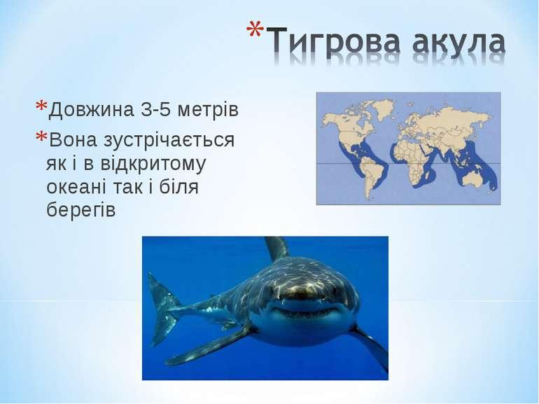 Довжина 3-5 метрів Вона зустрічається як і в відкритому океані так і біля бер...
