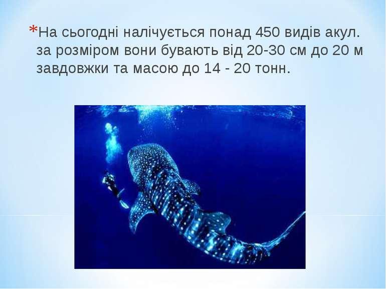 На сьогодні налічується понад 450 видів акул. за розміром вони бувають від 20...