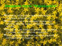 """Завдання групи """"Фармацевти"""" Виявити, які рослини Черкащини мають лікувальні в..."""