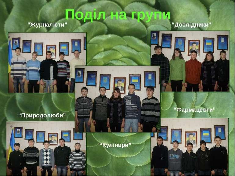 """Поділ на групи """"Журналісти"""" """"Природолюби"""" """"Фармацевти"""" """"Дослідники"""" """"Кулінари"""""""