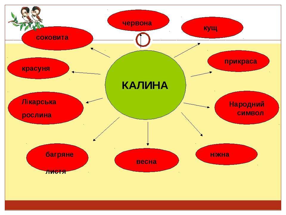 КАЛИНА червона кущ прикраса Лікарська рослина Народний символ ніжна весна баг...