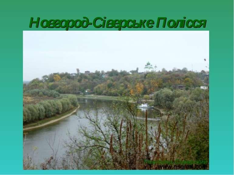 Новгород-Сіверське Полісся