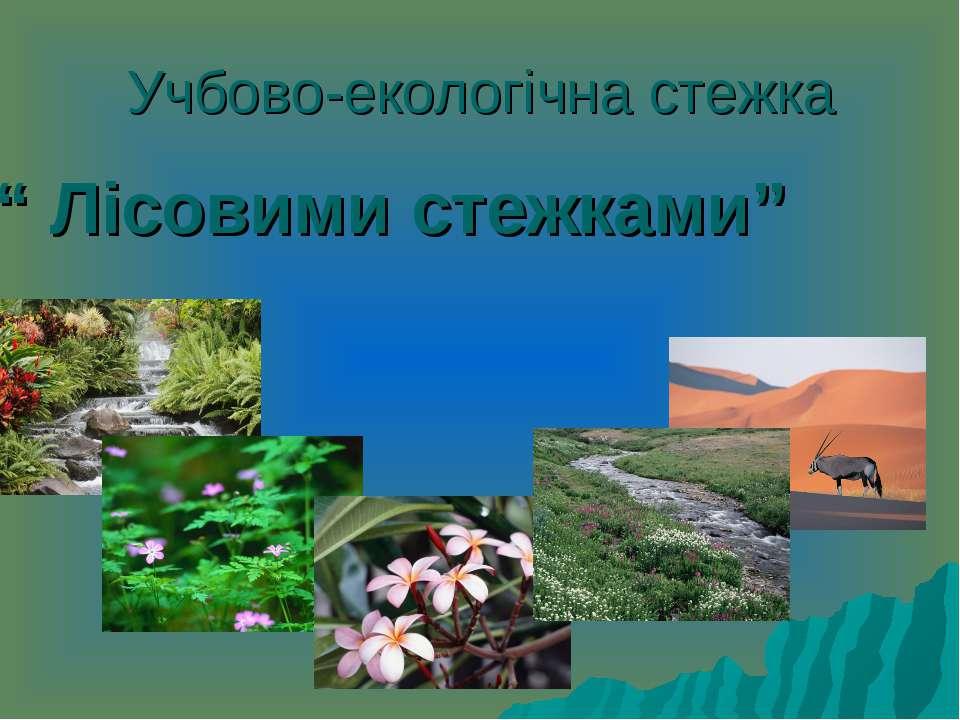 """Учбово-екологічна стежка """" Лісовими стежками"""""""