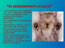"""Чи розмовляють кішки? У котів свій язик, що складається з 15 """"слів"""" та багать..."""