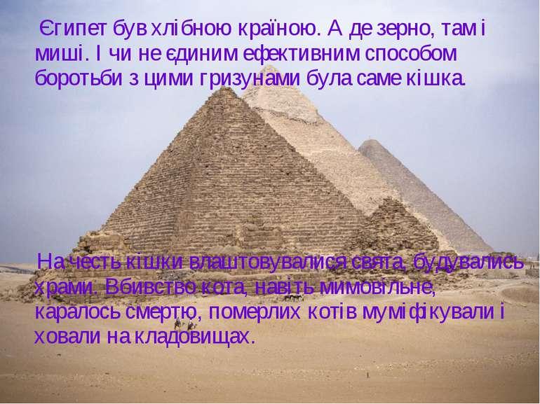Єгипет був хлібною країною. А де зерно, там і миші. І чи не єдиним ефективним...