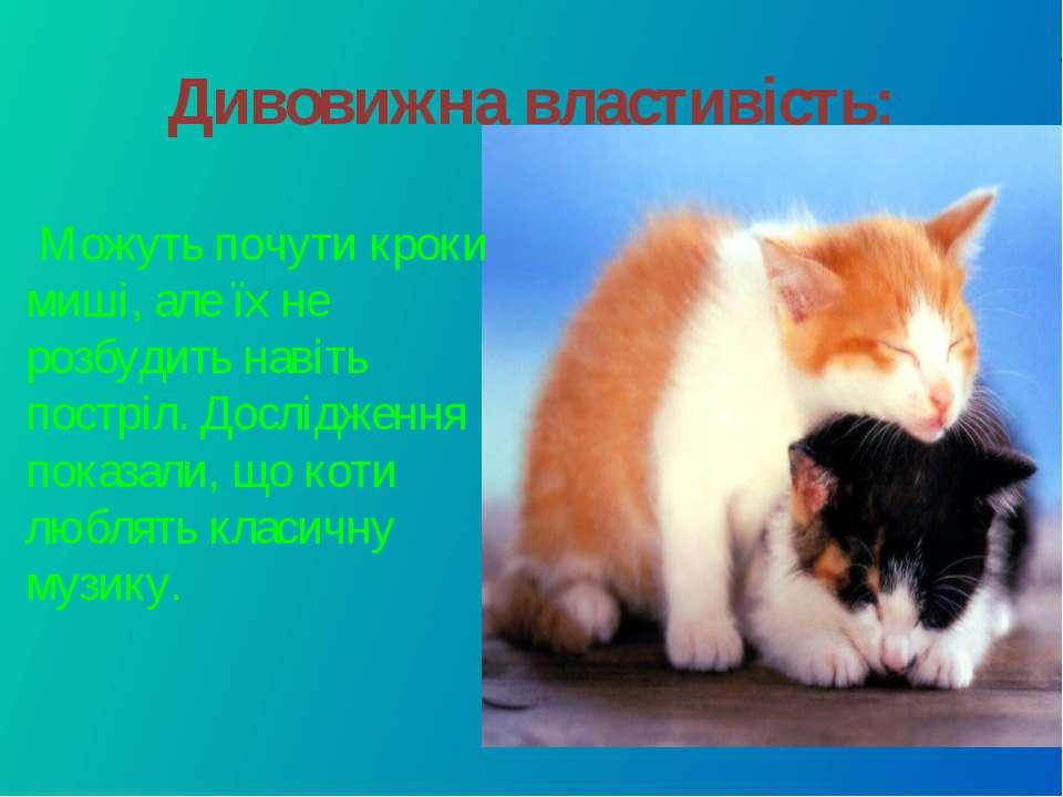 Дивовижна властивість: Можуть почути кроки миші, але їх не розбудить навіть п...