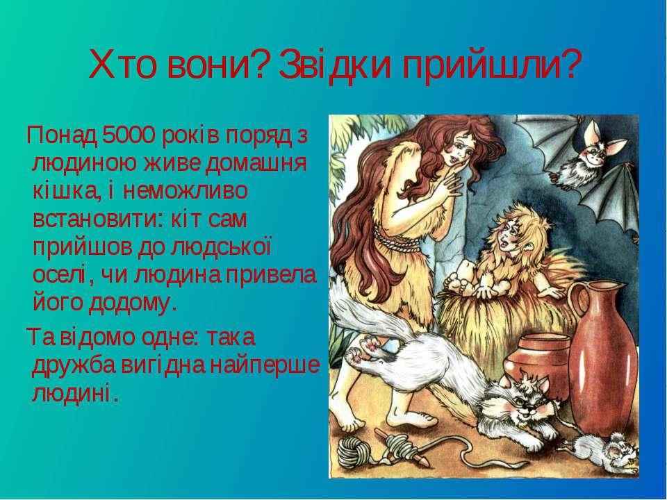 Хто вони? Звідки прийшли? Понад 5000 років поряд з людиною живе домашня кішка...