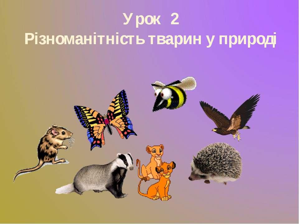 Урок 2 Різноманітність тварин у природі