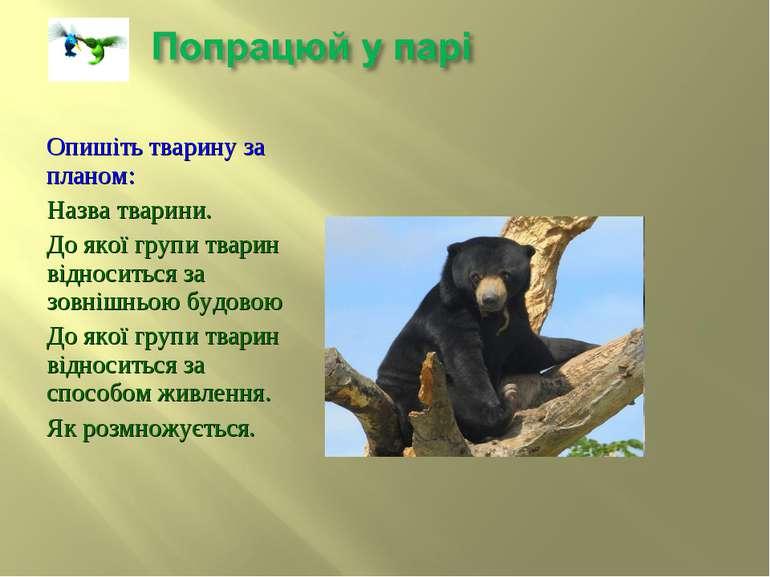 Опишіть тварину за планом: Назва тварини. До якої групи тварин відноситься за...