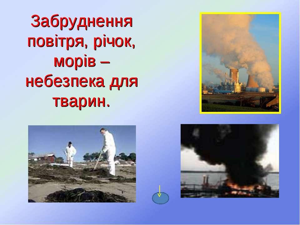 Забруднення повітря, річок, морів – небезпека для тварин.