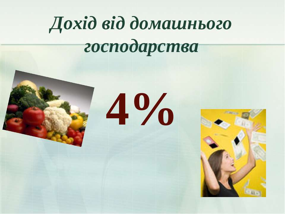 Дохід від домашнього господарства 4%
