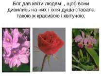 Бог дав квіти людям , щоб вони дивились на них і їхня душа ставала такою ж кр...