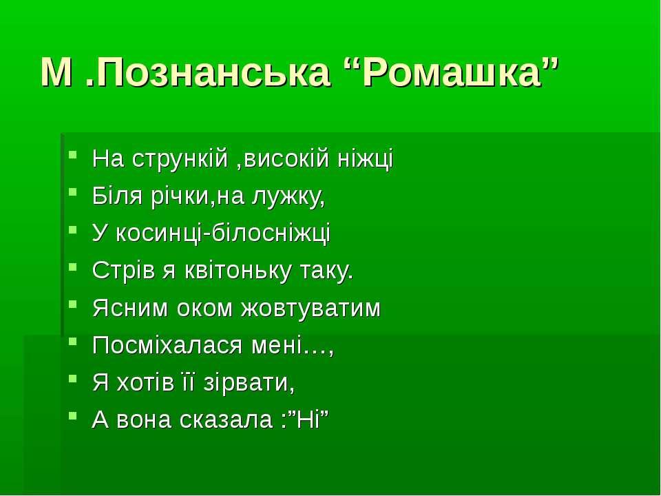 """М .Познанська """"Ромашка"""" На стрункій ,високій ніжці Біля річки,на лужку, У кос..."""