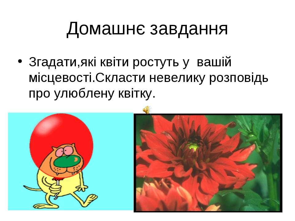 Домашнє завдання Згадати,які квіти ростуть у вашій місцевості.Скласти невелик...