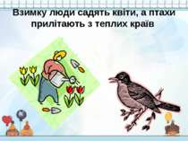 Взимку люди садять квіти, а птахи прилітають з теплих країв