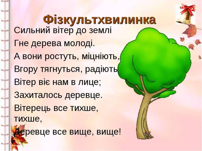 Фізкультхвилинка Сильний вітер до землі Гне дерева молоді. А вони ростуть, мі...