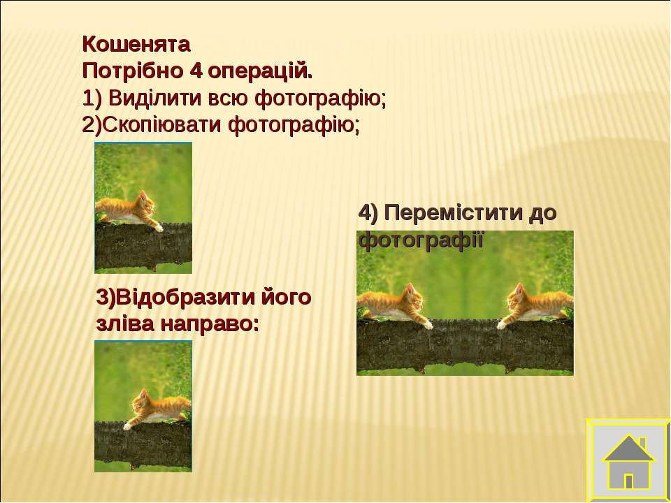 Кошенята Потрібно 4 операцій. 1) Виділити всю фотографію; 2)Скопіювати фотогр...