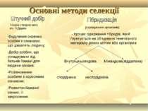 Основні методи селекції Теорію створив англ. вч. Ч.Дарвін (схрещування органі...