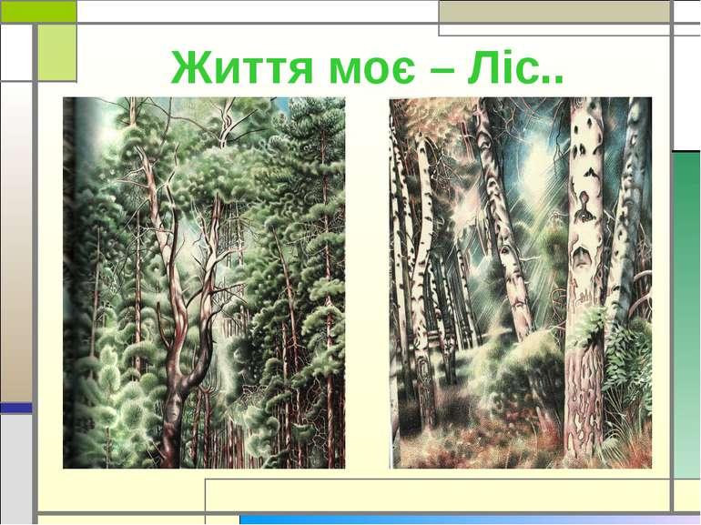 Життя моє – Ліс..