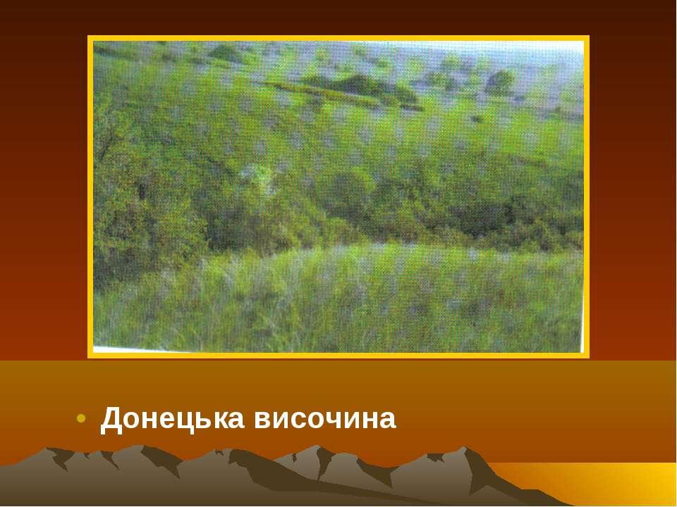 Донецька височина
