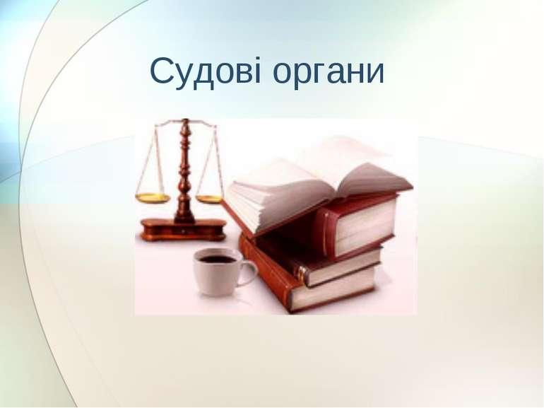 Судові органи