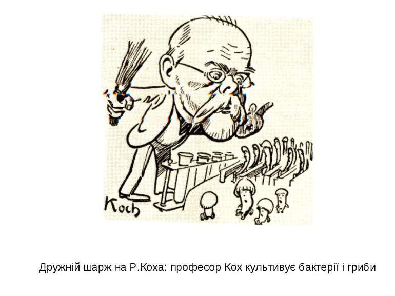 Дружній шарж на Р.Коха: професор Кох культивує бактерії і гриби